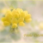 ostern_076