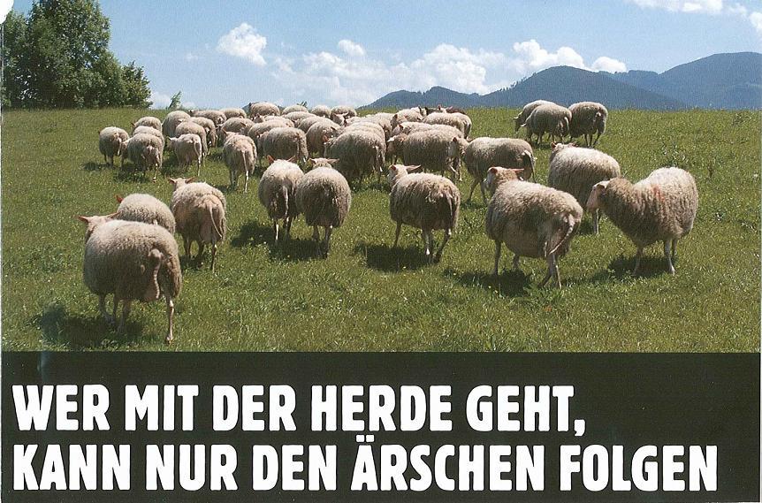 Wer mit der Herde…