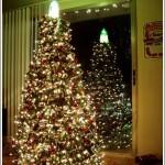 weihnachtsbaum_6_loslachen-ch