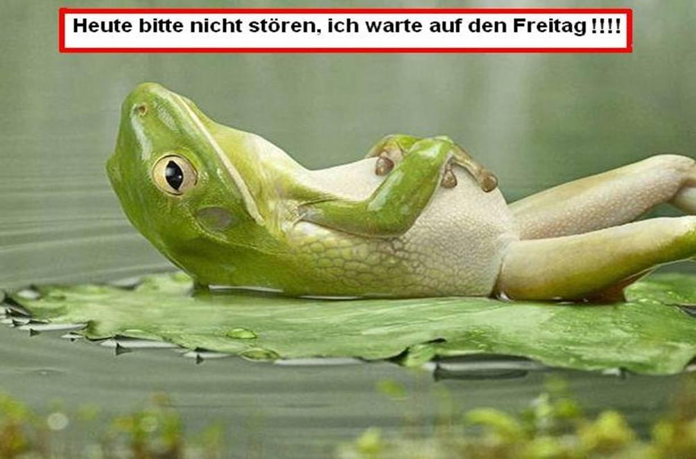 Mein Motto des Tages…