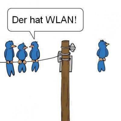 WLAN auch bei den Vögeln