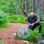 Büxlisuche im Wald