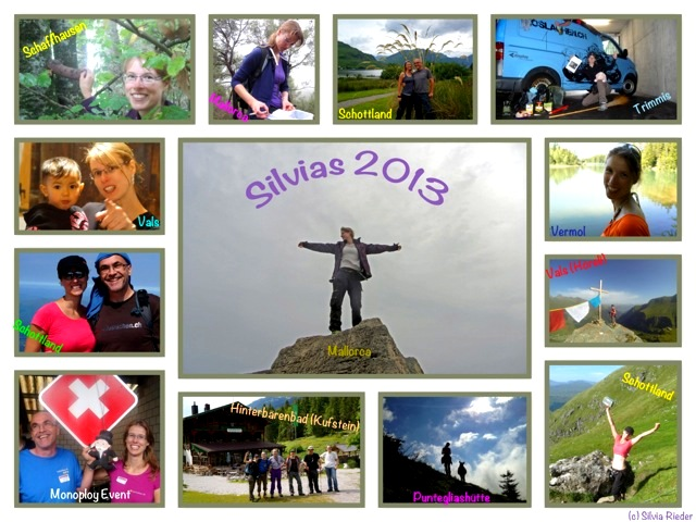silvia-2013