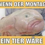 montag_tier