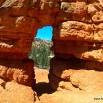 Kleiner Arche im Bryce
