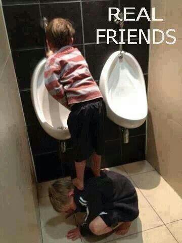 Wenn das keine Freunde sind