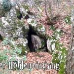 Eine Höhle im Wald