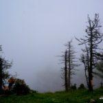 Nebelwetter