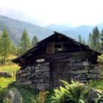 Stall in der Valle Bodasca