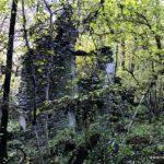 LoslPlace Dorf im Kastanienwald