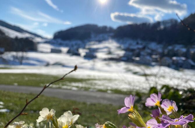 Vom Frühling in den Winter und zurück